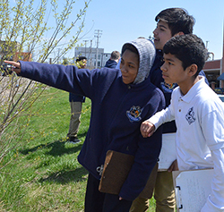 """UPrep students (left to right) Jarese Jones, David Lopez and Anthony Leon check out a natural urban woodland. """"I've learned to be respectful of nature and what God gave us,"""" Jarese said"""