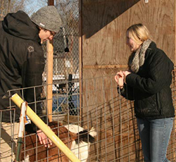 Parker Reed, left, and Mackenzie Stiles tended goats and other rescued animals at the Lowell Farm & Wildlife Center