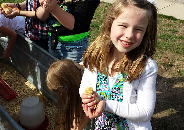 Murray Lake first-grader Reese Carpenter seems plenty pleased with the soft feel of a baby chick