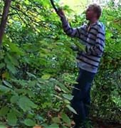 A student shown picking scent sources in nature, from the video advertising IsePure (courtesy photo)